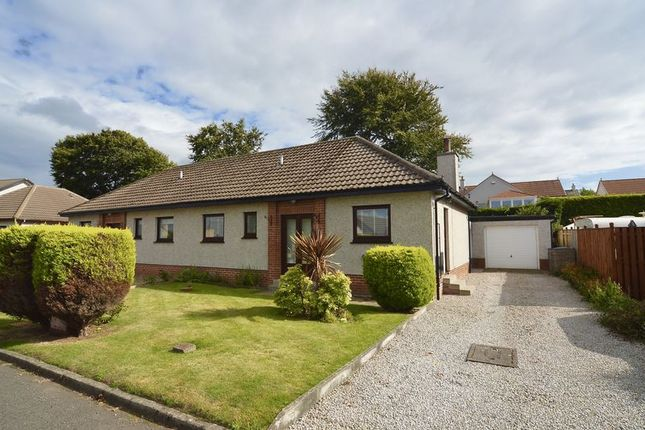 Thumbnail Semi-detached bungalow for sale in Abbots Crescent, Ayr