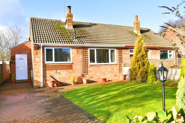 Thumbnail Semi-detached bungalow for sale in Knox Avenue, Harrogate