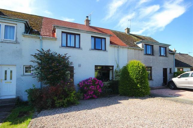 Thumbnail Terraced house for sale in 14, Straiton Terrace, Balmullo, Fife