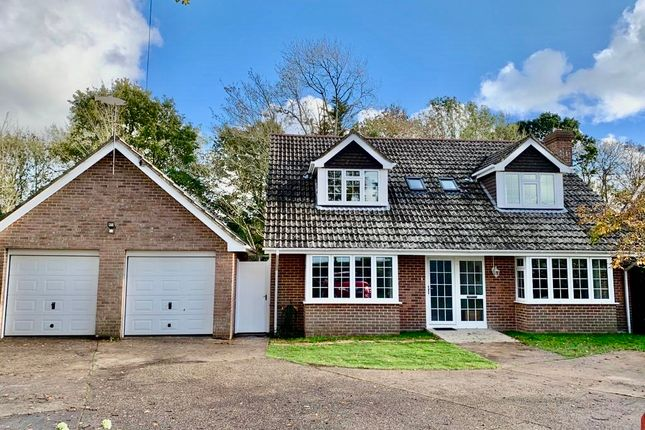Thumbnail Detached house to rent in Holly Lodge, East Boldre
