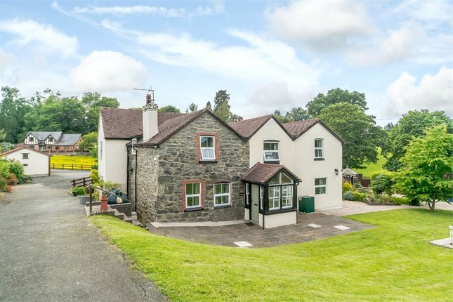 Thumbnail Detached house for sale in Groes-Pluen, Groes-Pluen, Welshpool, Powys