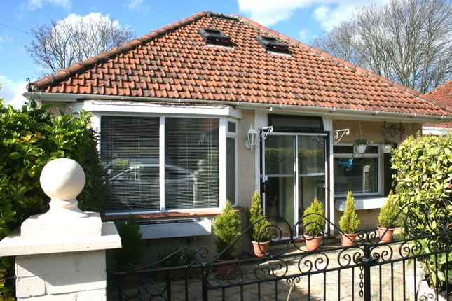 Thumbnail Detached bungalow for sale in Lumley Road, Cheam