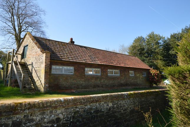 Thumbnail Detached bungalow to rent in Rake Road, Liss