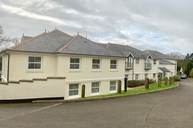 Thumbnail Flat to rent in Callington Road, Tavistock