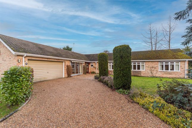 Thumbnail Detached bungalow to rent in Mingle Lane, Stapleford, Cambridge, Cambridgeshire