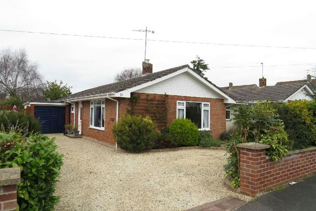 Thumbnail Detached bungalow for sale in Homestead Way, Winscombe