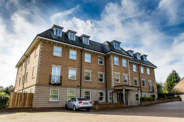 Thumbnail Flat to rent in 119 Thorpe Road, Peterborough, Cambridgeshire