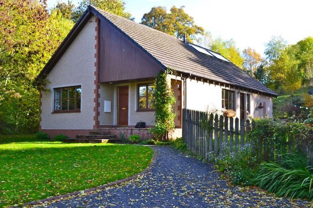 Thumbnail Bungalow for sale in The Willows, Blacklee Brae Bonchester