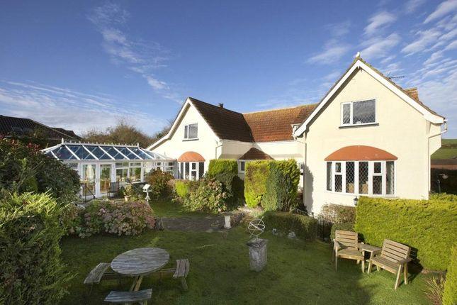 Thumbnail Detached house for sale in Hillhead, Brixham, Devon