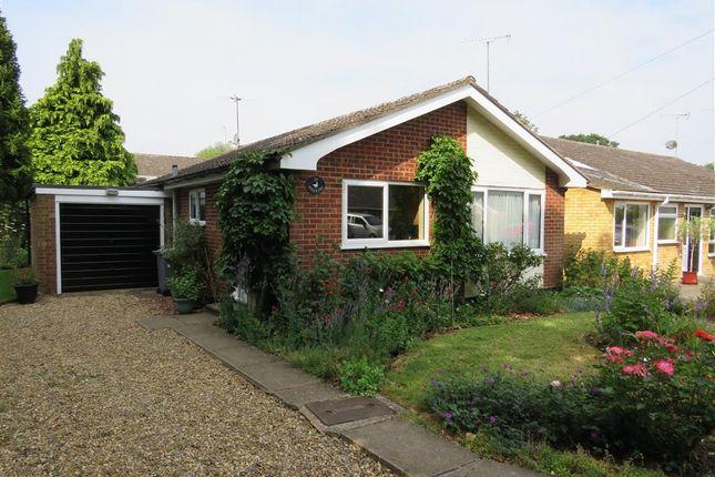 Thumbnail Detached bungalow for sale in Levishaw Close, Buxton, Norwich