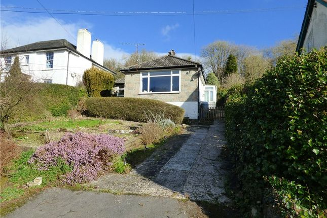 Thumbnail Detached bungalow to rent in Lyme Road, Uplyme, Lyme Regis, Devon