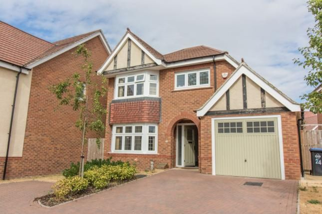 Thumbnail Detached house to rent in Sigwels Road, Cawston, Rugby