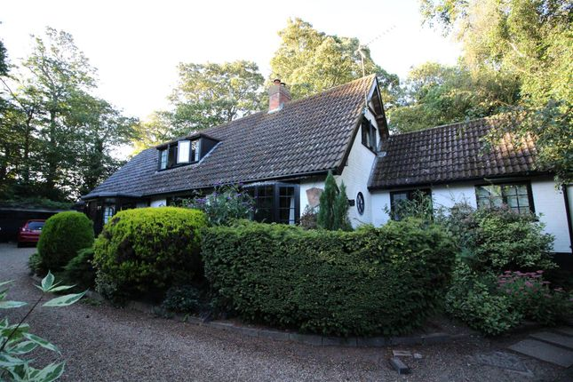 Thumbnail Detached bungalow to rent in North Walsham Road, Knapton, North Walsham