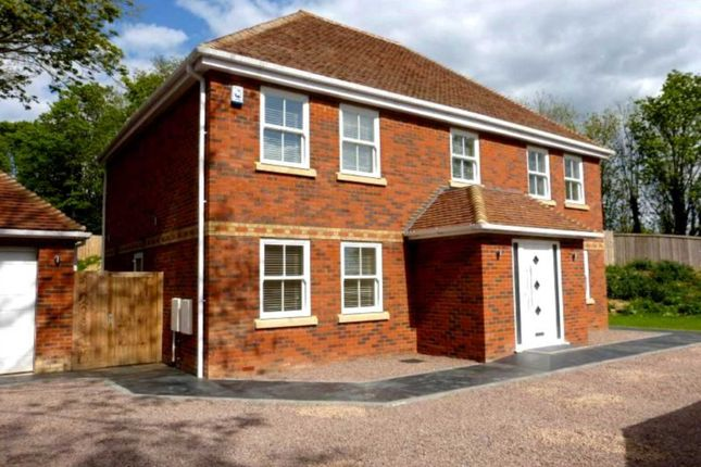 Thumbnail Property to rent in The Avenue, Welwyn