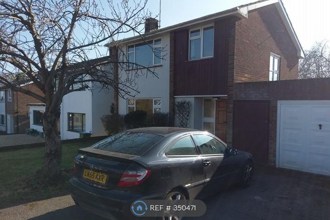Thumbnail Detached house to rent in The Parkway, Southampton