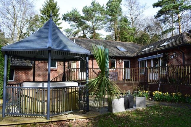 Thumbnail Property for sale in Fielden Road, Crowborough