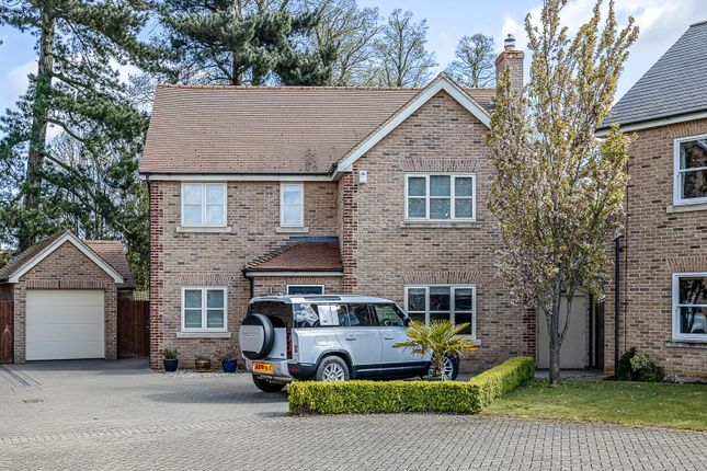 Thumbnail Property for sale in The Firs, Wilburton, Ely