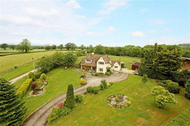 Thumbnail Detached house for sale in Standle Lane, Stinchcombe