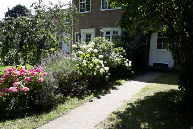 Terraced house to rent in Clement Court, Maidstone