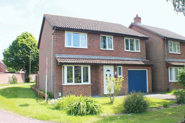 Thumbnail Detached house for sale in Pennycress, Locks Heath, Southampton