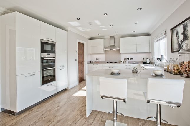 """Thumbnail Detached house for sale in """"Yew"""" at John Porter Wynd, Aberdeen"""