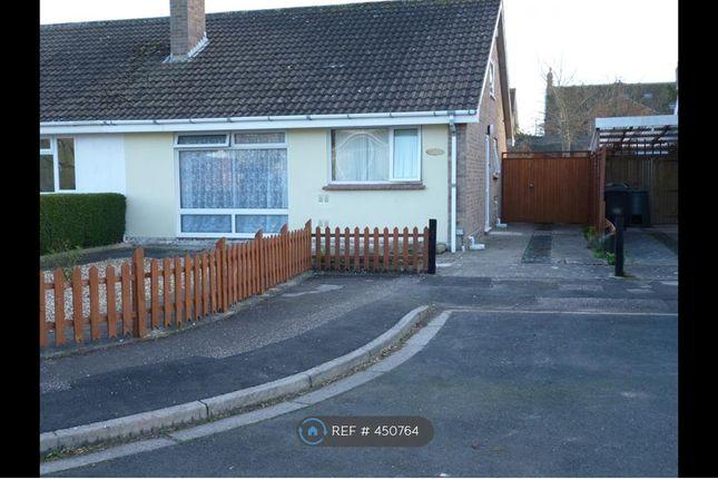 Thumbnail Bungalow to rent in Caernarvon Way., Burnham-On-Sea