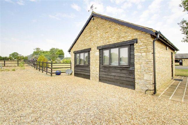Thumbnail Detached bungalow to rent in Badgers Farm, Cosgrove, Milton Keynes, Bucks