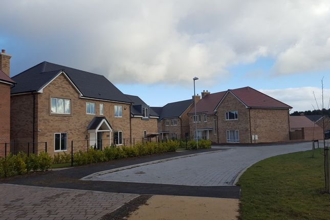 Detached house for sale in Beamish Way, St. Mary Park, Stannington, Morpeth, Northumberland