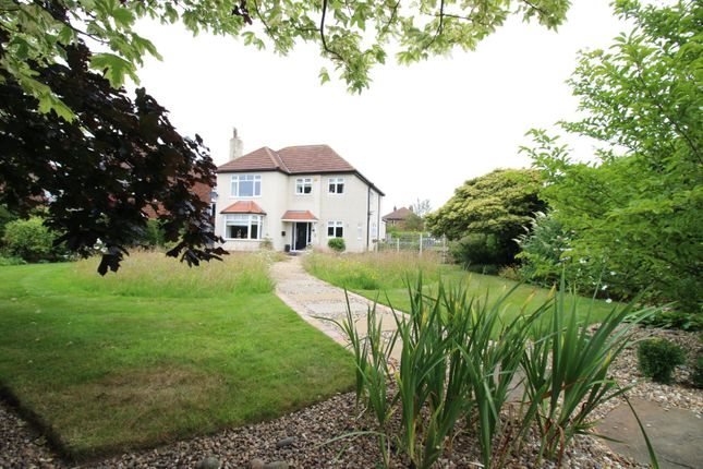 Thumbnail Detached house for sale in Main Road, Bilton, Hull, East Yorkshire
