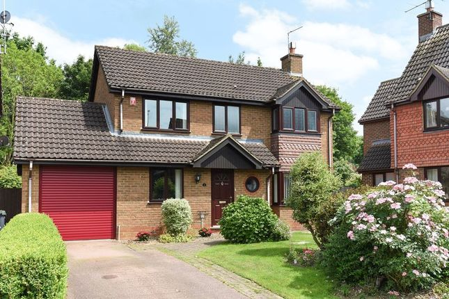Thumbnail Detached house for sale in Woodland Drive, Bramley, Tadley
