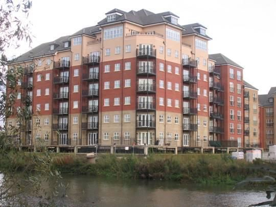 Thumbnail Property to rent in Palgrave Road, Bedford