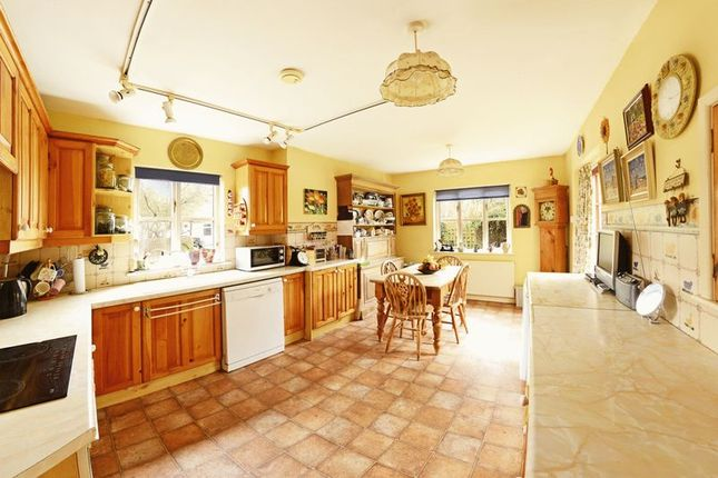 Thumbnail Detached house for sale in Godmanstone, Dorchester