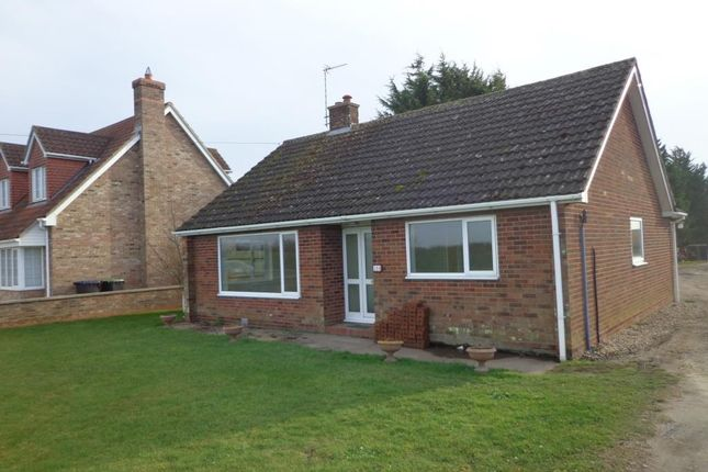 Thumbnail Detached bungalow to rent in Mildenhall Road, Fordham