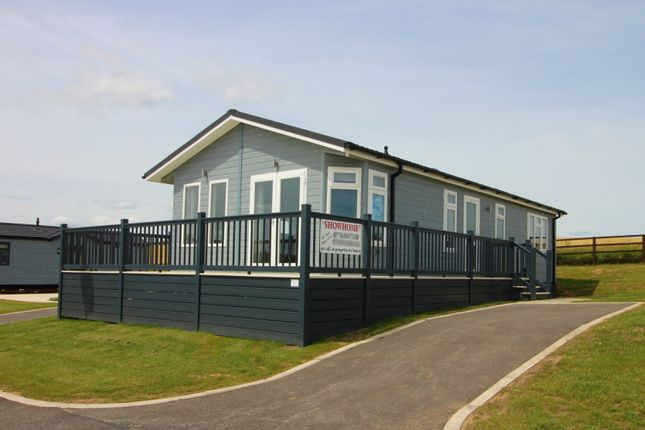 Thumbnail Detached bungalow for sale in Evergreen Park, Coast Road, Blackhall