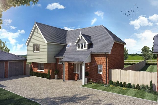 Thumbnail Detached house for sale in Ware Road, Widford, Ware, Nr. Hertford, Herts