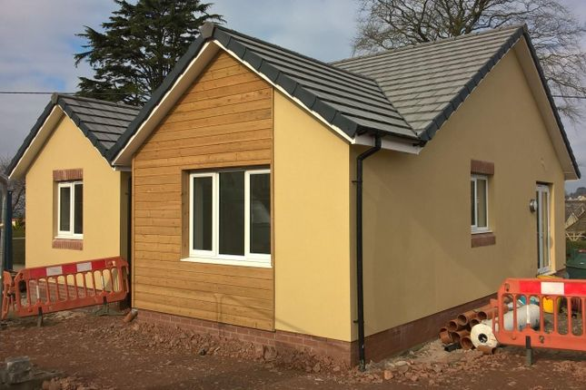 Thumbnail Detached bungalow for sale in Kingsway, South Molton