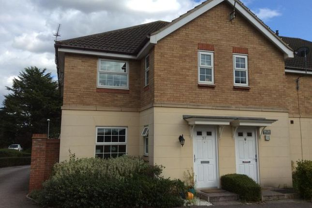 Thumbnail Property to rent in Wards View, Kesgrave, Ipswich