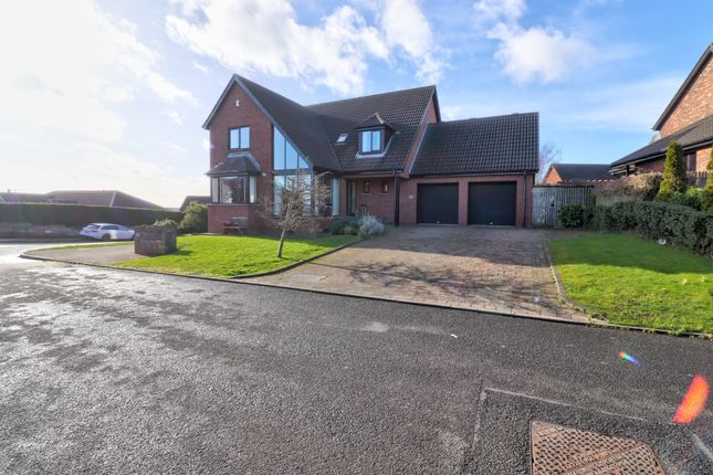 Thumbnail Detached house for sale in Teal Rocks, Newtownards