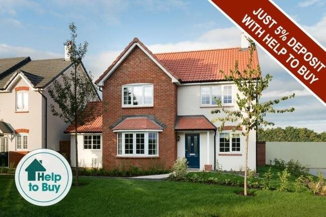 Thumbnail Property for sale in Puriton Hill, Puriton, Bridgwater