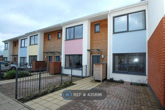 Thumbnail Terraced house to rent in Kettle Street, Colchester