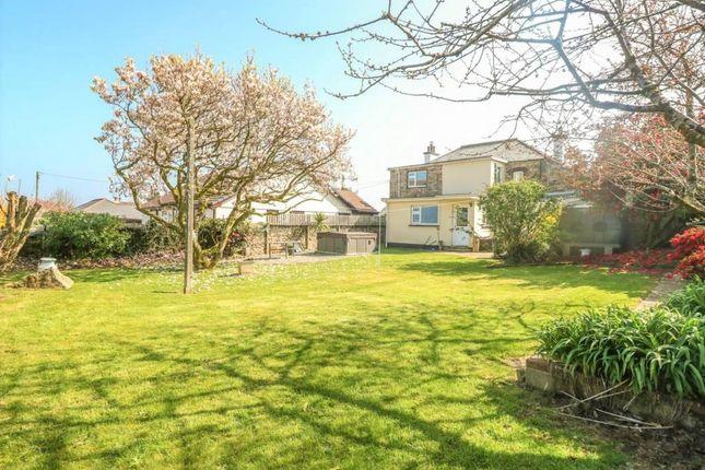 Garden of Upton Cross, Liskeard, Cornwall PL14