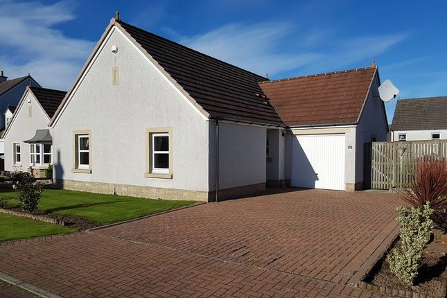 Thumbnail Detached bungalow for sale in 15 Ailsa View Wynd, Doonfoot, Ayr