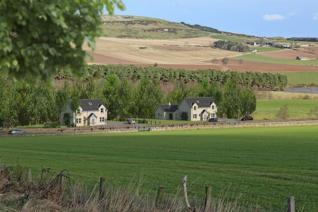 Thumbnail Land for sale in Plot Of Land, Boal Cottages West, Forfar