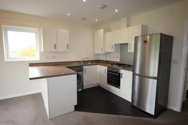 Thumbnail Flat to rent in Nicholson Park, Brackenll
