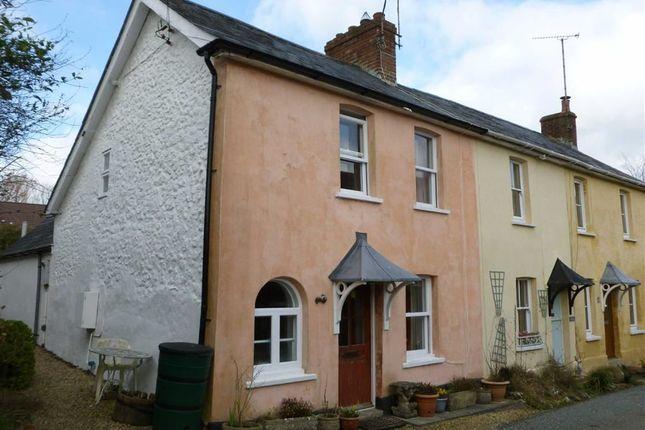 Thumbnail Terraced house for sale in High Street, Toller Porcorum, Dorset