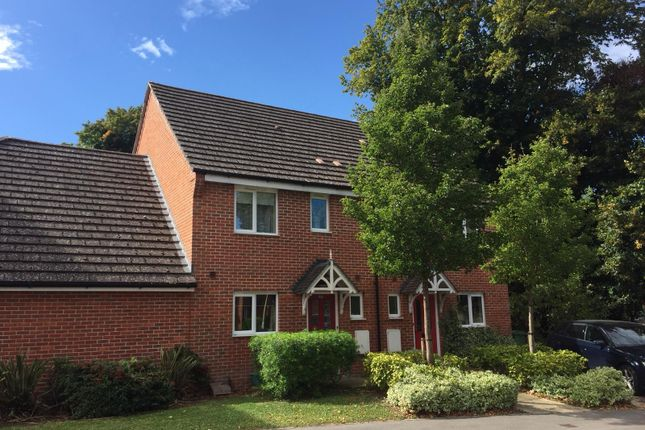 Thumbnail Semi-detached house for sale in Skippetts Gardens, Basingstoke, Hampshire