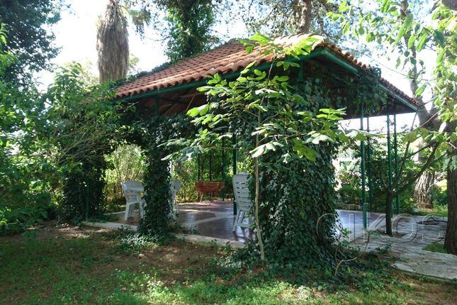 Via Torre Santa Susanna Oria Brindisi Puglia Italy 4 Bedroom Villa For Sale 37380581