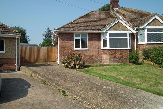 Thumbnail Bungalow to rent in Burford Avenue, Abington, Northampton