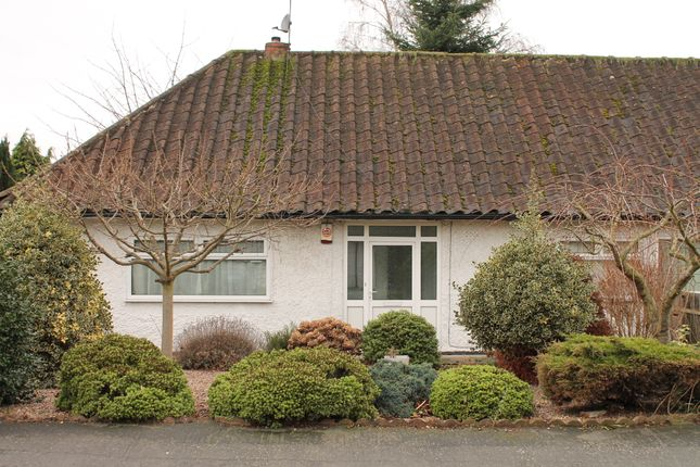 Thumbnail Bungalow to rent in Orston Drive, Wollaton Park, Nottingham