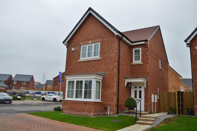 Thumbnail Detached house for sale in Ceremony Wynd, Clairville Grange, Middlesbrough